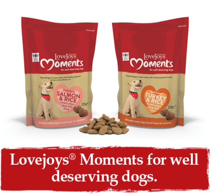 Lovejoy's Moments keksit 225 g